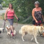 Pack walks build socialization skills