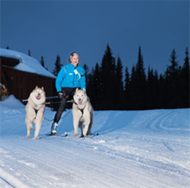 Skijoring & kick sledding are easy transitions from canicross